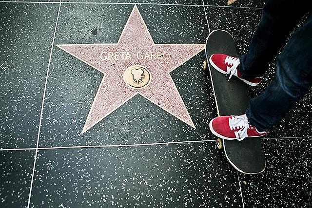hollywoodstars2