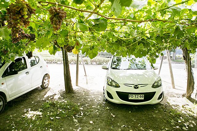 skugg_parkering